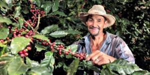 honduran coffee farmer