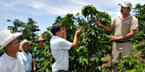 honduran coffee farmers